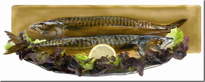 KMOTR-40101-uzena-makrela-vac