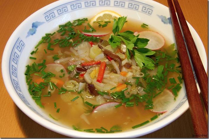 Kyselá asijská polévka se vším všudy03