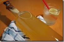 07 - bezinkový sirup a limonáda