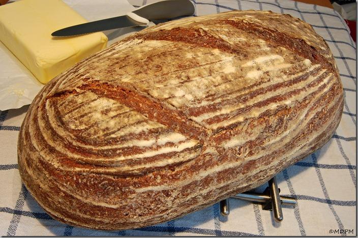 04-chlebík mošťák Cider