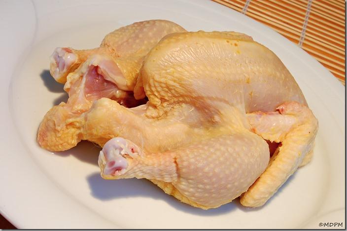 01-francouzské jarní kuřátko