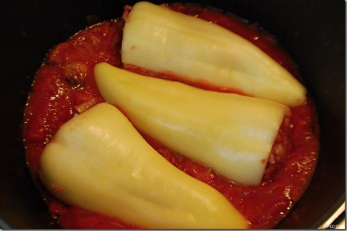 06-základ,rajčata,papriky