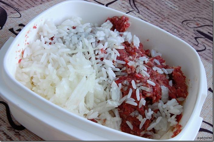 01-maso,rýže,cibule