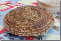 chléb 89 hotovo02