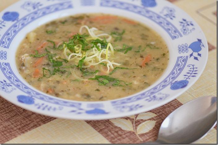 hrstková polévka2-01